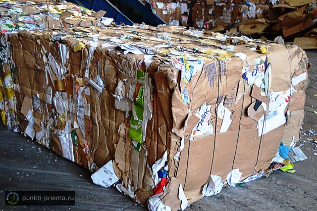 Вывоз картона сургут почем принимают макулатуру в ульяновске