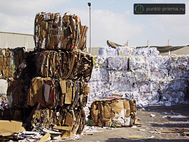 Где сдать макулатуру в таганроге пункты приема бумажных отходов перми сдать макулатуру какова цена кг