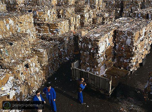 Прием макулатуры в городе батайске ростовской обл сызрань прием картона