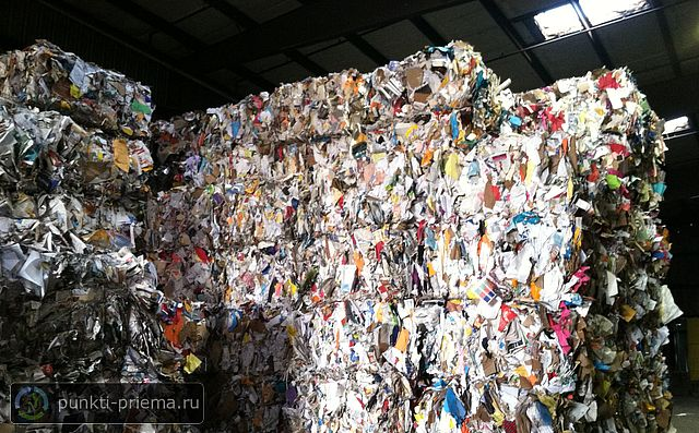 recycling of paper The recycling of paper has become increasingly important over the past decade the drivers of this change include both environmental and governmental forces in papermaking, the drying process causes morphological changes in the paper fibers, which prevents rehydration and reduces the subsequent bonding ability of the fibers.