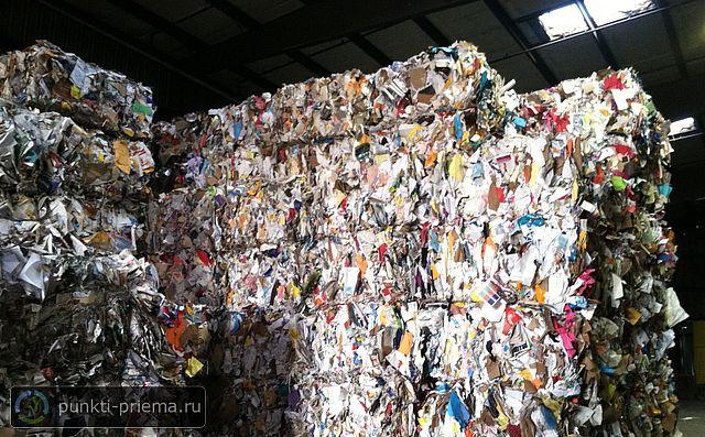 Примем макулатуру в анапе сколько макулатуры сохранит живые деревья для изготовления бумаги