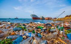 Пластиковый мусор в океане: причины загрязнения, вред для океанической фауны и для человечества